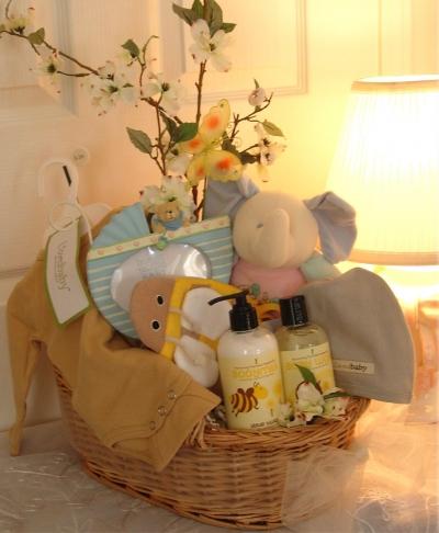 Luxury Baby Gift Basket