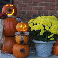 Easy and Affordable Halloween Decorating Tips