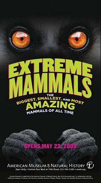 Mammals Get EXTREME!