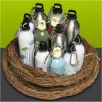 earthlust stainless steel water bottles