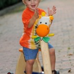 r105_giraffe-trike-tricycle_2