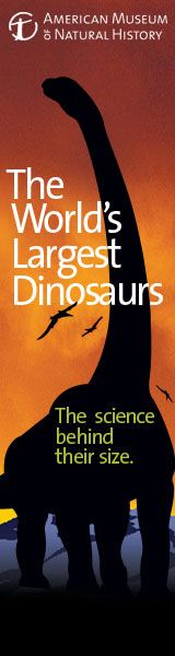 Worlds Largest Dinosaurs AMNH 2
