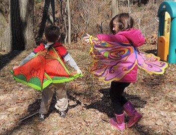 Douglas Dress Up Fairy Butterfly Dragon Wings