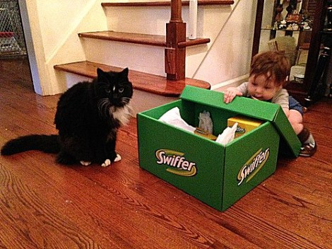 Loki and Cyrus Swiffer It Forward