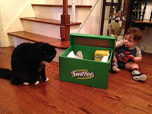 Swiffer it Forward with the  #ASPCA — the #SwifferEffect