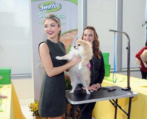 Sarah Hyland and Pup Grooming