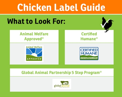 Label Guide
