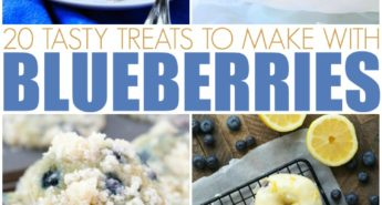 20 Tasty Treats To Make With Blueberries