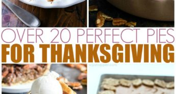 Over 20 Perfect Pies For Thanksgiving