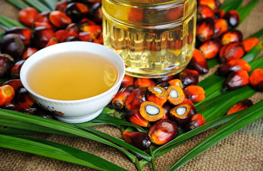 Get the Facts: A Smart Mom's Guide to Palm Oil