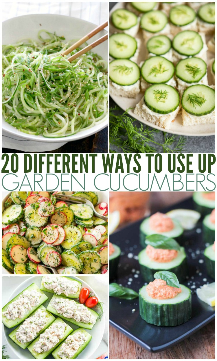20 Different Ways To Use Up Garden Cucumbers