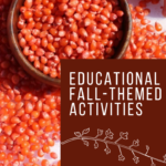 Looking for fall themed sensory activities to do with the kids this season? We have you covered with these educational, fall-themed activities!