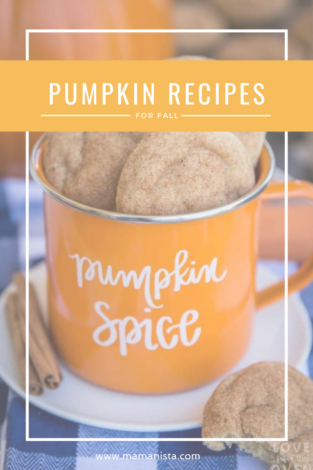 Whether or not you're a fan of the PSL, you'll love these pumpkin recipes for fall - from donuts to muffins, we've got you covered!