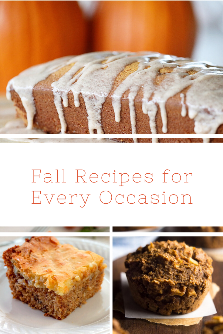 One of the best parts of this time of year is the food and fall flavors. Check out these fall recipes for every occasion.